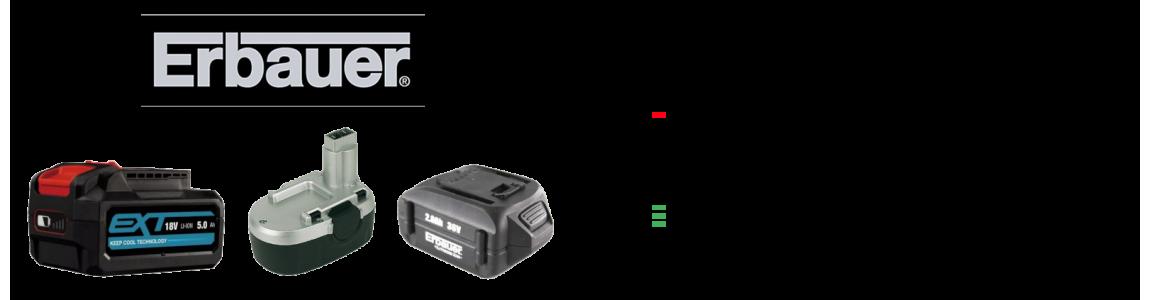 Regeneracja akumulatorów Briggs&Stratton